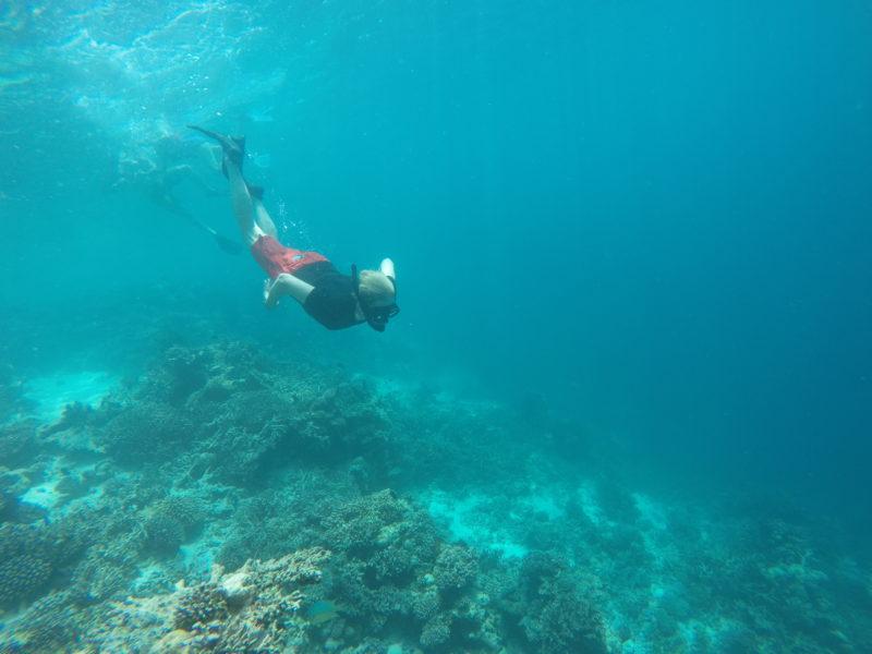 Snorkeling - Maafushi Maldives