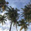 Bikini Beach view