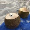 Coconut drinks on Bikini Beach Maafushi