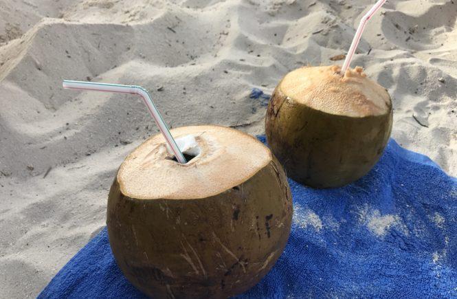 Coconut drinks on Bikini Beach Maafushi
