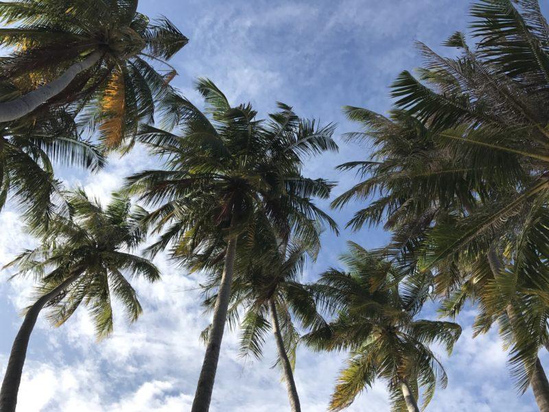 Family Beach Trip – Maafushi Maldives in 3 Acts