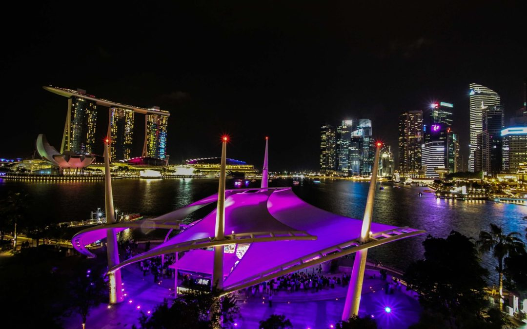 Singapore Visitors Guide – Travel Ups and Downs